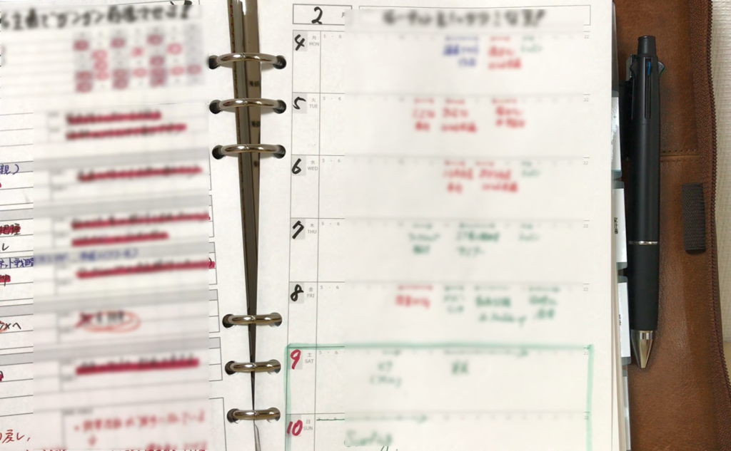 【会員限定動画】週間行動計画表、ウィークリーリフィルの活用事例(2)スケジュール欄